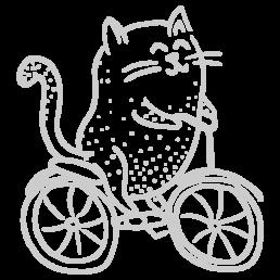 kot na rowerze | Chrosiówka noclegi na Mazurach